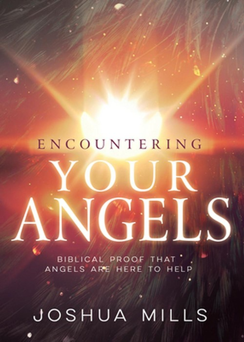 Encountering Your Angels (Paperback)