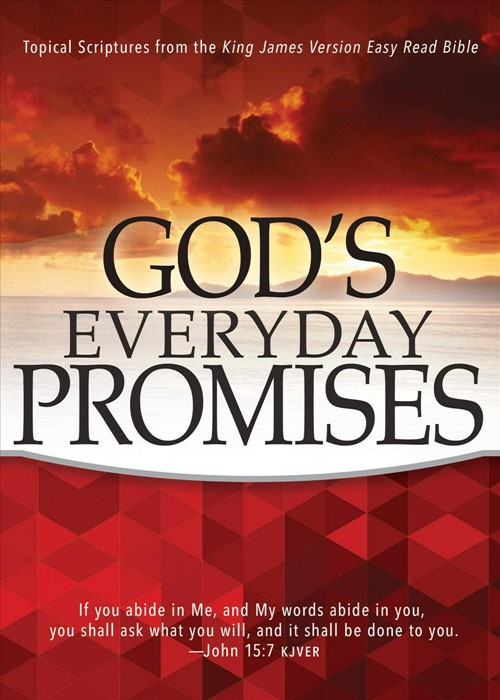 God's Everyday Promises (Paperback)