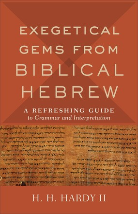 Exegetical Gems from Biblical Hebrew (Paperback)