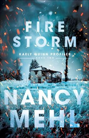 Fire Storm (Paperback)