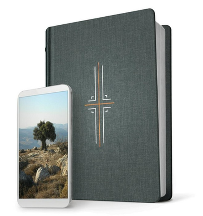 NLT Filament Bible, Gray, Indexed (Hard Cover)