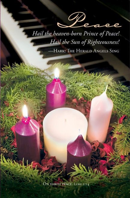 Advent Peace Bulletin (Pack of 100) (Bulletin)