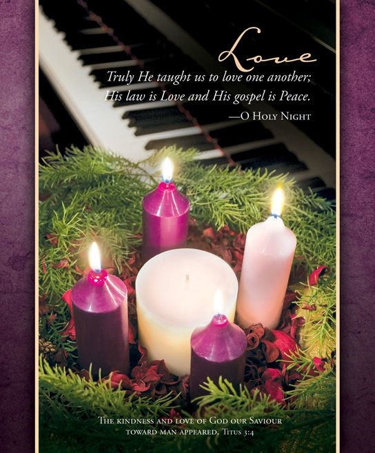 Advent Love Bulletin Large (Pack of 100) (Bulletin)