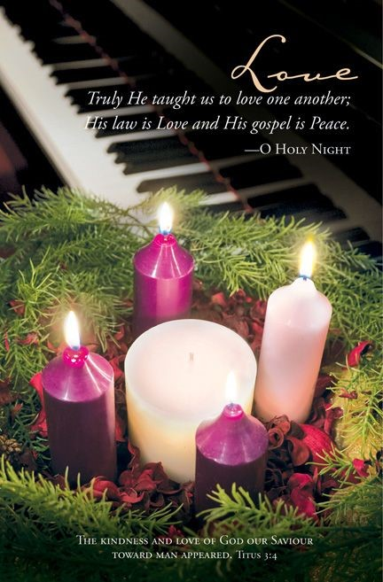 Advent Love Bulletin (Pack of 100) (Bulletin)