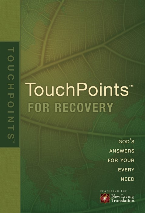 Touchpoints for Recovery (Paperback)
