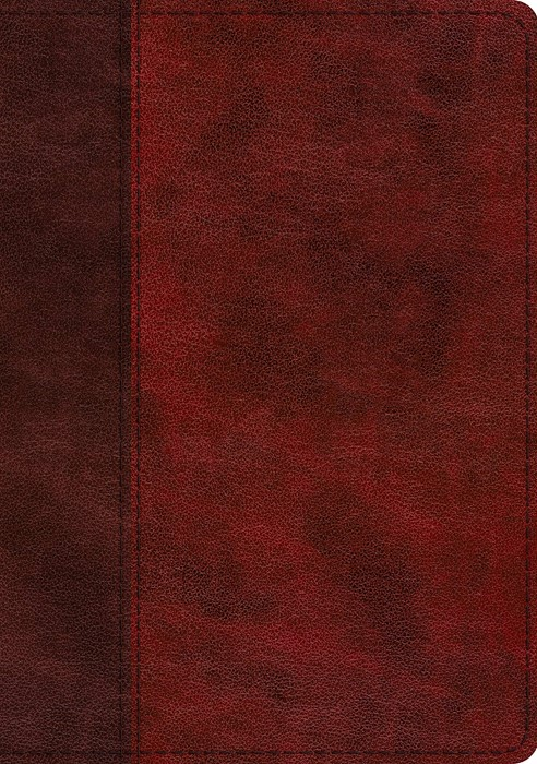 ESV Single Column Journaling Bible, Large Print, Burgundy (Imitation Leather)