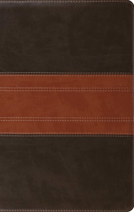 ESV Large Print Personal Size Bible, Forest/Tan (Imitation Leather)