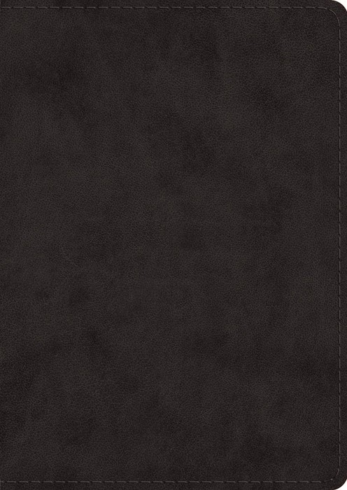 ESV Study Bible, Large Print, Black (Imitation Leather)