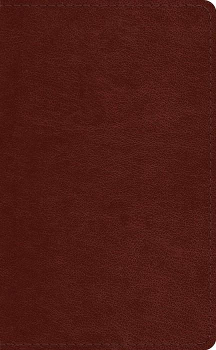 ESV Pocket Bible, Chestnut (Imitation Leather)