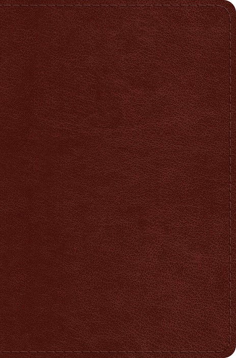 ESV Single Column Legacy Bible, Chestnut (Imitation Leather)