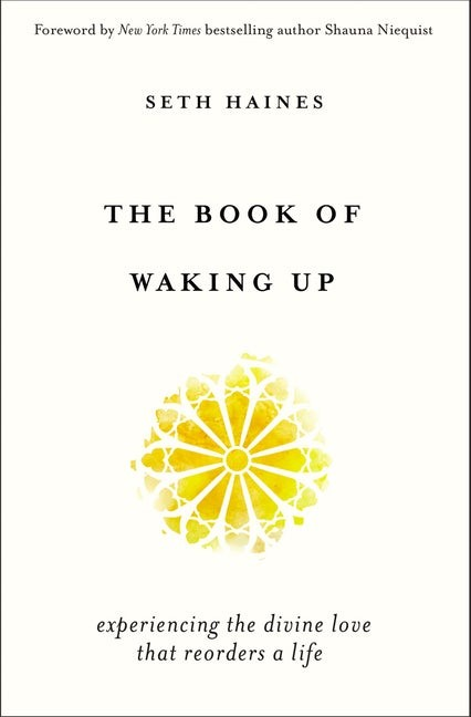 The Book of Waking Up (Paperback)
