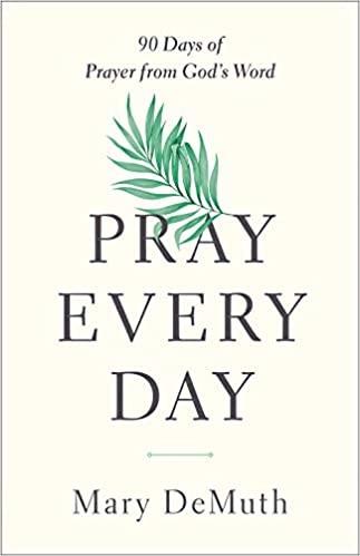 Pray Every Day (Paperback)