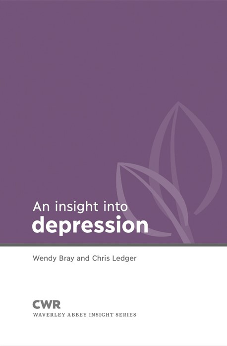 Insight into Depression (Paperback)