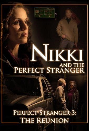 Nikki and the Perfect Stranger DVD (DVD)