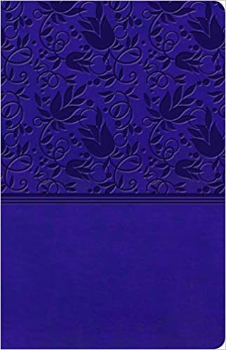 KJV Ultrathin Reference Bible, Purple LeatherTouch (Imitation Leather)