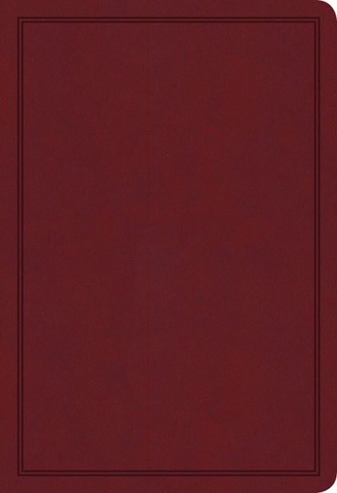 KJV Deluxe Gift Bible, Burgundy LeatherTouch (Imitation Leather)
