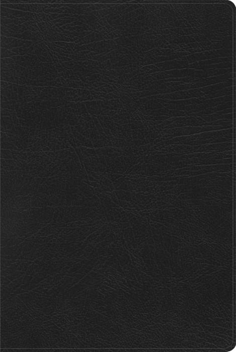 RVR 1960 Biblia de Estudio Arco Iris, negro imitación piel (Imitation Leather)