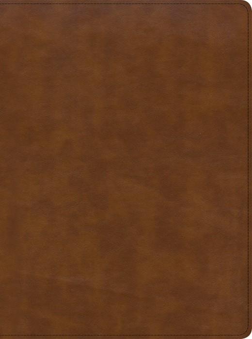 CSB Holy Land Illustrated Bible, British Tan LeatherTouch, I (Imitation Leather)