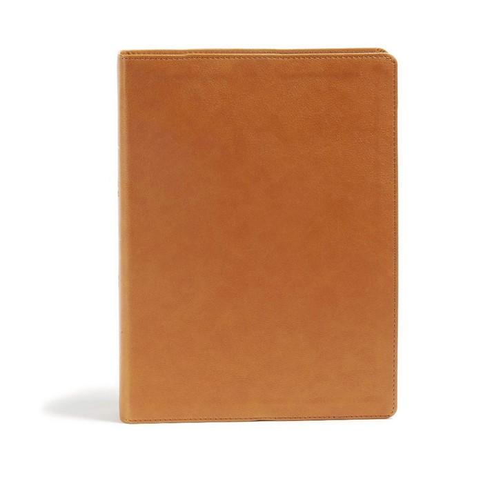CSB Holy Land Illustrated Bible, Ginger LeatherTouch (Imitation Leather)