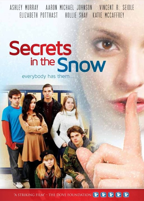 Secrets in the Snow DVD (DVD)