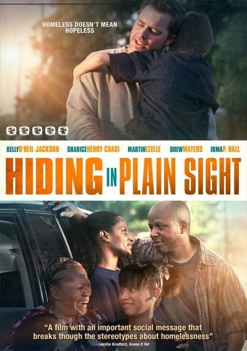 Hiding in Plain Sight DVD (DVD)