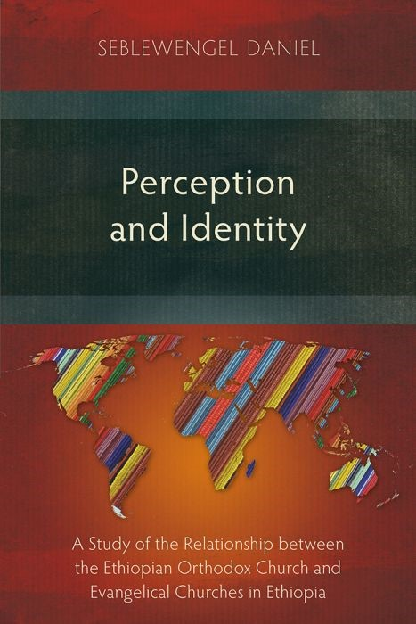 Perception and Identity (Paperback)