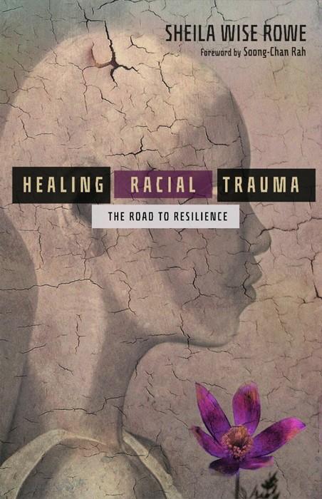 Healing Racial Trauma (Paperback)