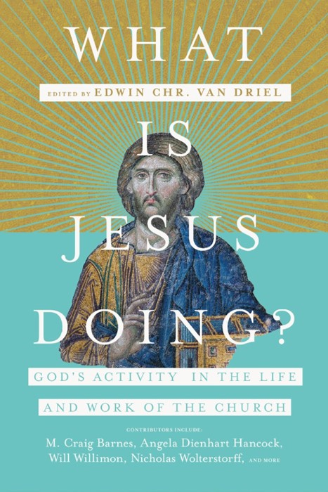 What is Jesus Doing? (Paperback)