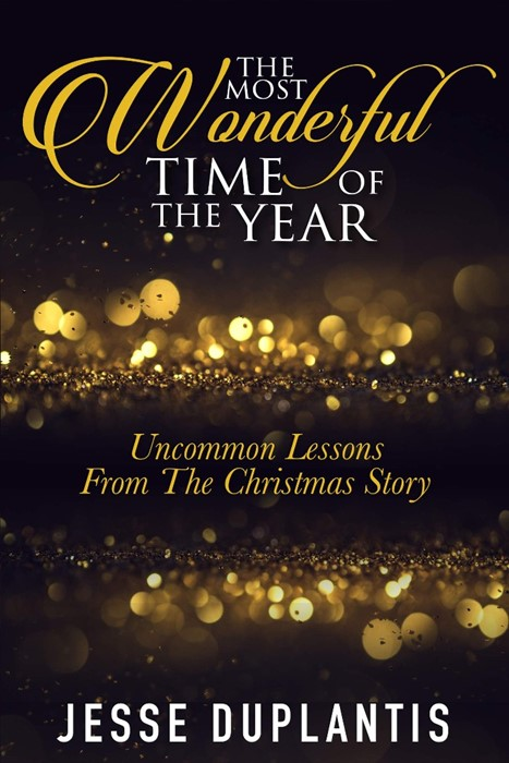 The Most Wonderful Time of the Year (Hard Cover)