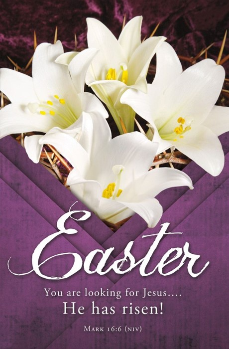 You are Looking for Jesus Easter Bulletin (pack of 100) (Bulletin)