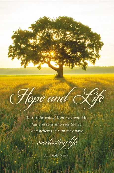 Hope and Life Funeral Bulletin (pack of 100) (Bulletin)