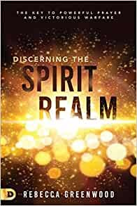 Discerning the Spirit Realm (Paperback)