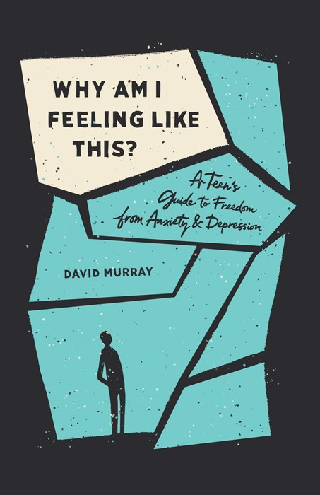 Why Am I Feeling Like This? (Paperback)