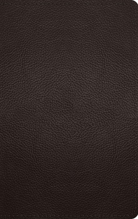 ESV Thinline Bible (Buffalo Leather, Deep Brown) (Imitation Leather)