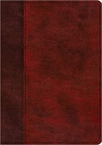 ESV Study Bible (TruTone, Burgundy/Red, Timeless Design (Imitation Leather)