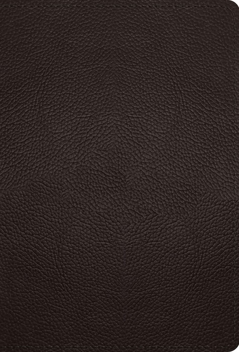 ESV Large Print Compact Bible (Buffalo Leather, Deep Brown) (Imitation Leather)
