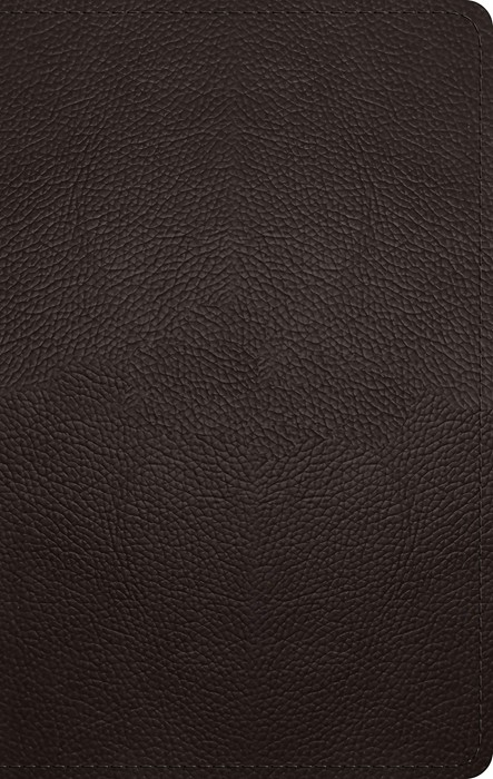 ESV Large Print Personal Size Bible (Buffalo Leather, Deep B (Imitation Leather)