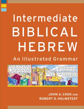 Intermediate Biblical Hebrew (Paperback)