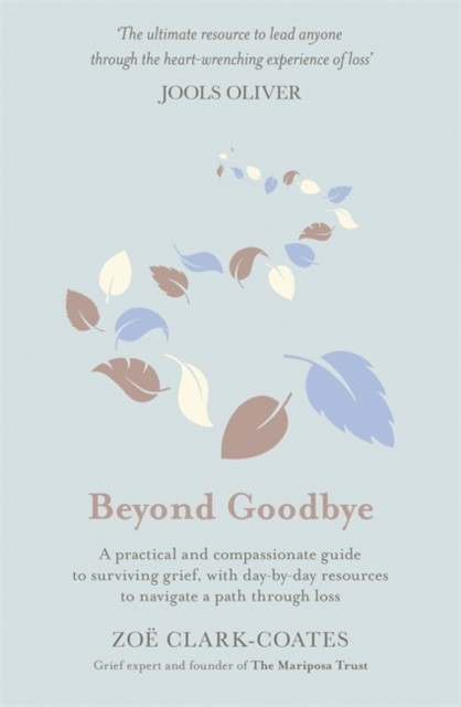 Beyond Goodbye (Hard Cover)