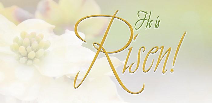 Risen Easter Dogwood Offering Envelope (Pkg of 50) (Bulletin)