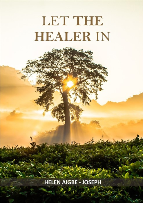 Let the Healer In (Paperback)