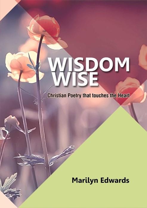 Wisdom Wise (Paperback)
