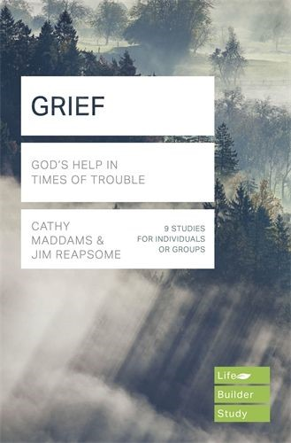 LifeBuilder: Grief (Paperback)