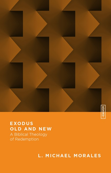 Exodus Old and New (Paperback)