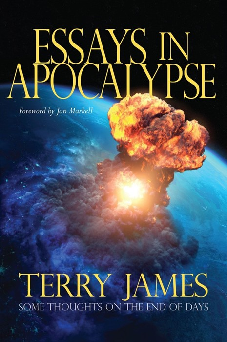 Essays in Apocalypse (Paperback)