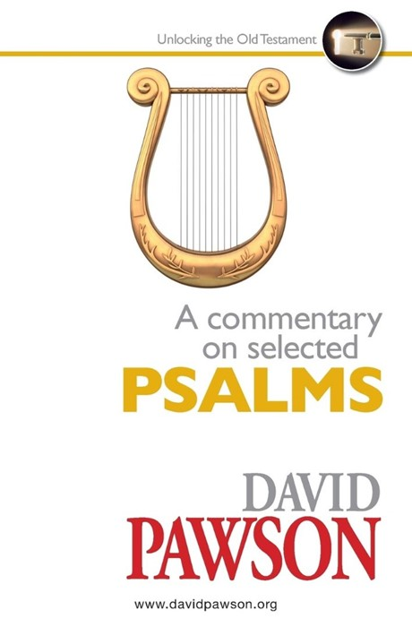 Commentary on Selected Psalms, A (Paperback)