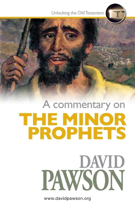 Commentary on the Minor Prophets, A (Paperback)