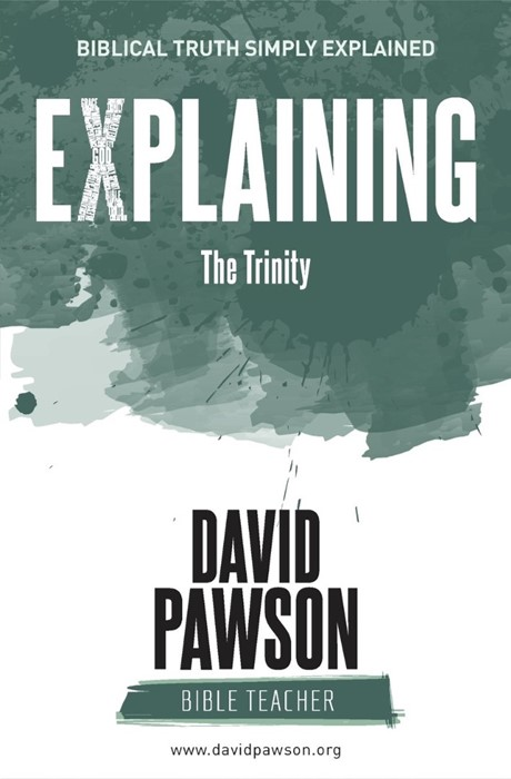 Explaining the Trinity (Paperback)
