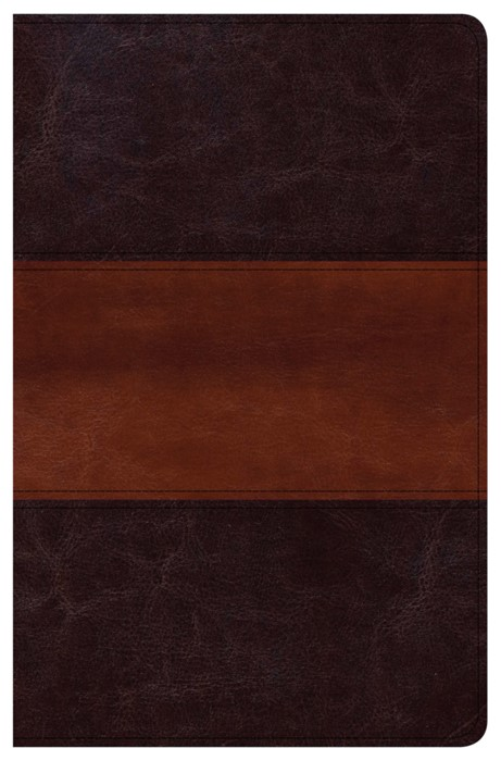 CSB Personal Size Reference Bible, Mahogany, Indexed (Imitation Leather)