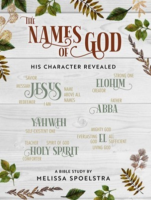 The Names of God Participant Workbook (Paperback)